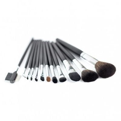 https://content.thefroot.com/media/market_products/584a7/3coastal-scents-12-piece-brush-set.jpg
